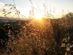 Por do sol em Meteora